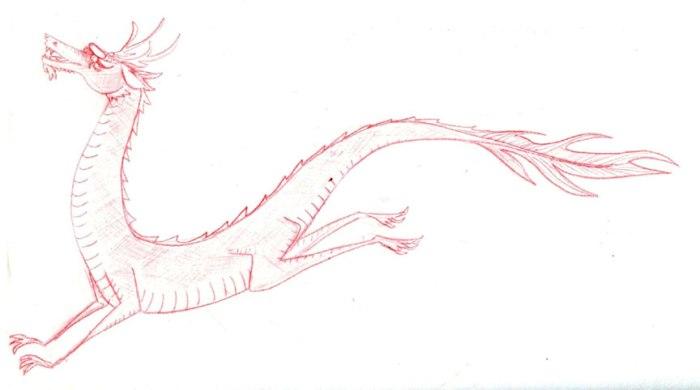 dragondoodle