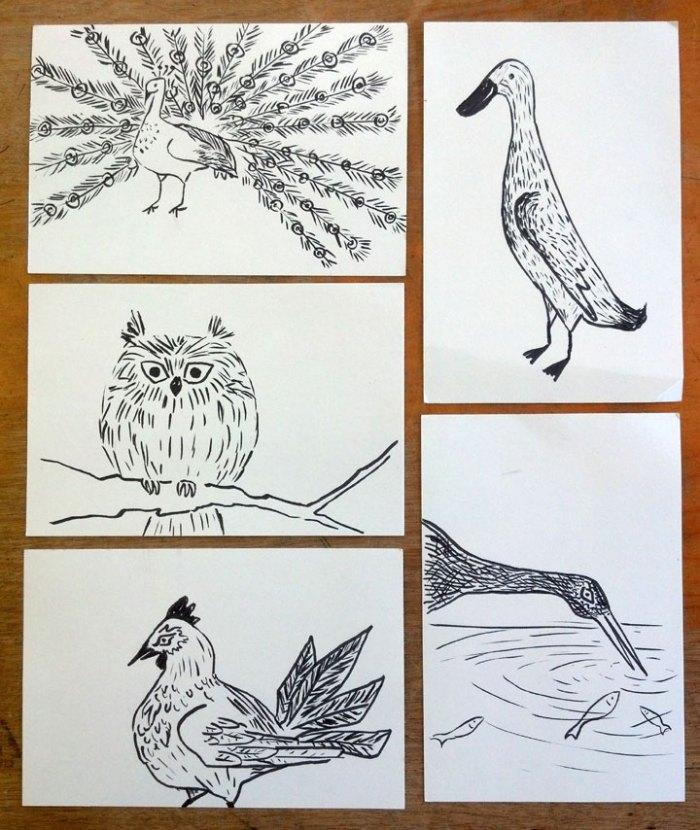 doodleBRUSHbirds